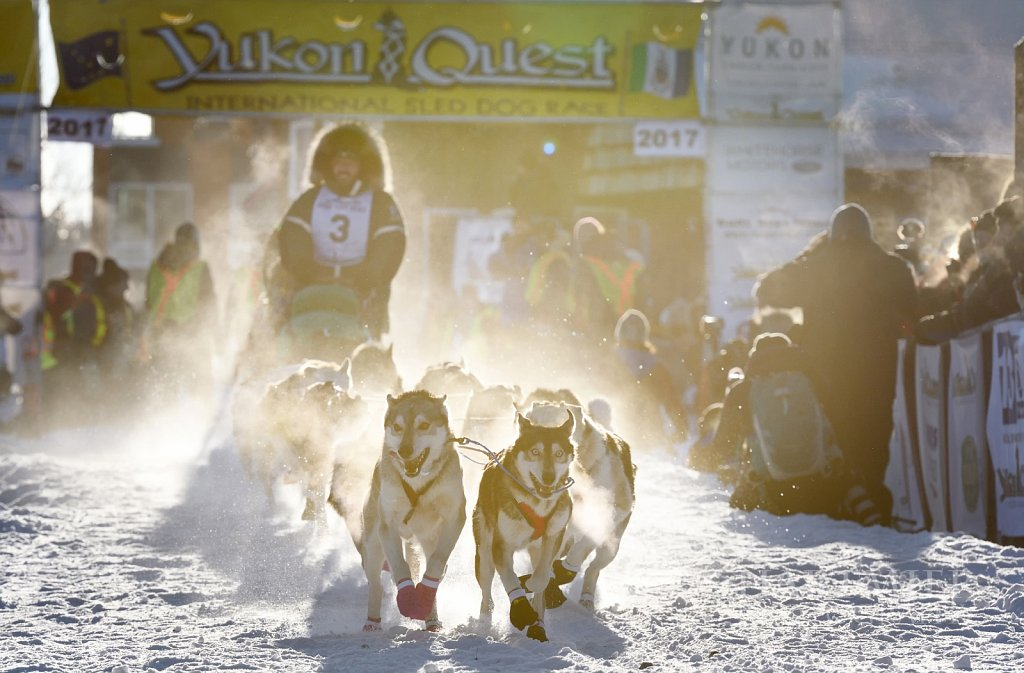 Yukon Quest start Whitehorse Feb4/17