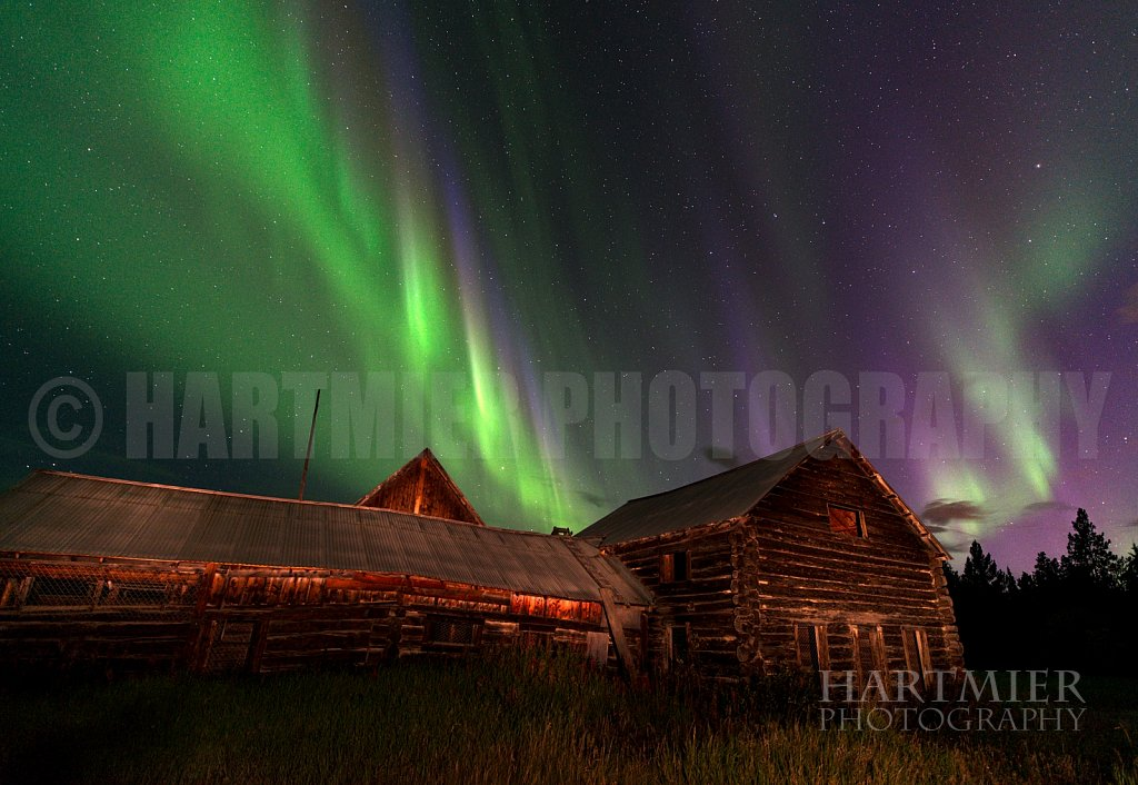 Robinson Roadhouse Aurora