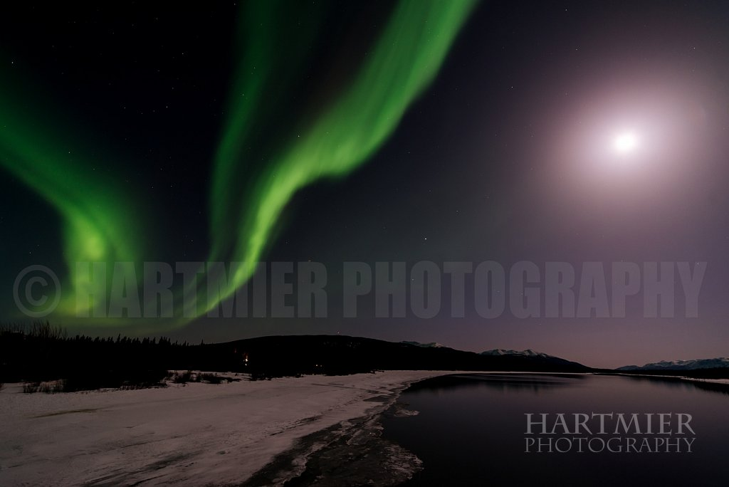 Full moon and Aurora ,Tagish ,Yukon
