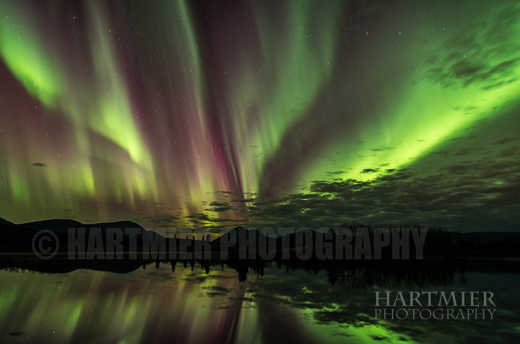 Wall to Wall aurora